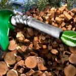 Перспективы развития биоэнергетики