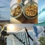 Ассоциация возобновляемой энергетики в России