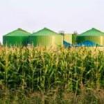 Из отходов сельского хозяйства будут производить биогаз в ЮФО